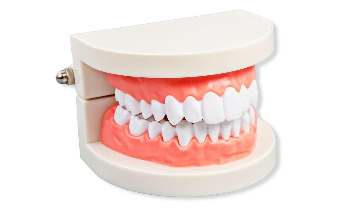 Dental Bonding Hinsdale, Downers Grove IL